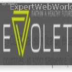 Evolet Healthcare Pvt. Ltd.
